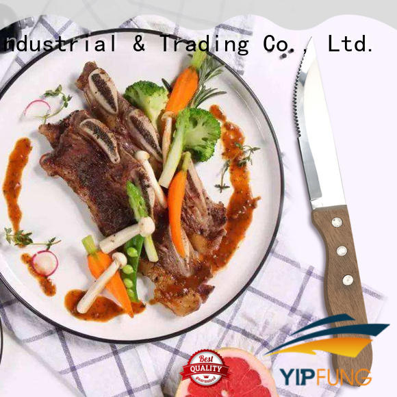YipFung PP + TPR handle with taper grinding serrated serrated steak knives factory price for home use