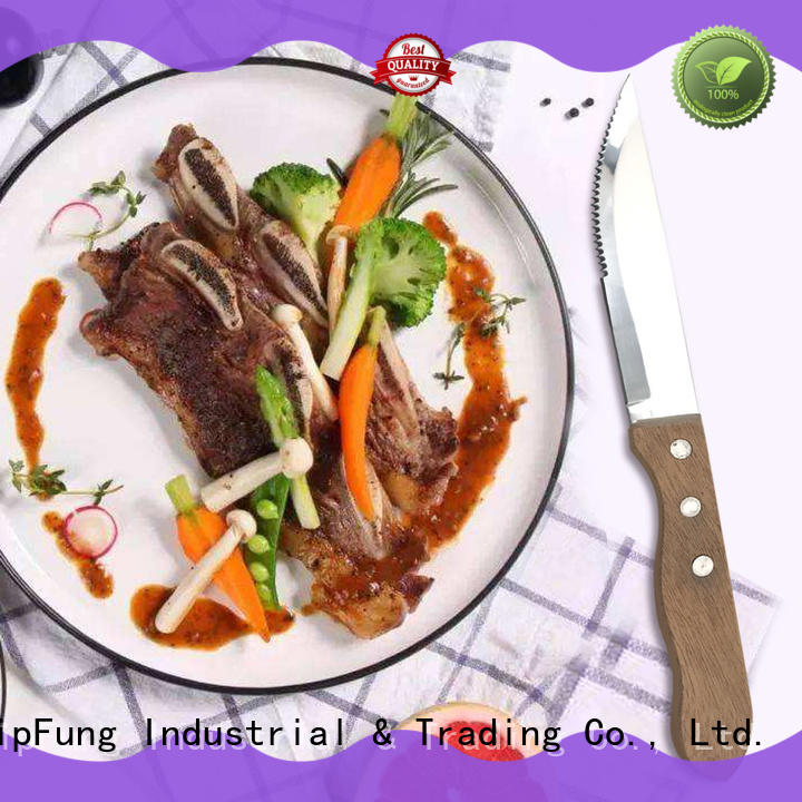 YipFung serrated steak knives customized for home use