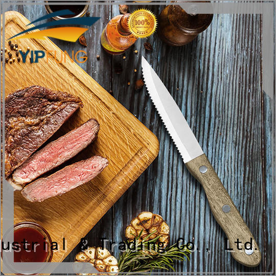 YipFung PP + TPR handle with taper grinding serrated steak knife customized for kitchen